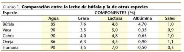 características de la Leche de bufalo