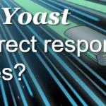 yoastredirectamp