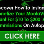 MoolaVine Income Stream