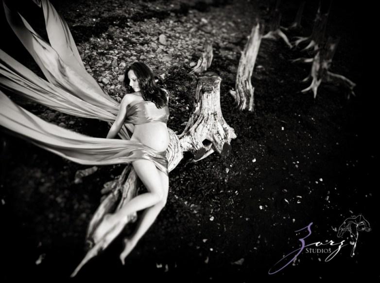 Destination Maternity: Alaskan, Russian, Tough, Pregnant. By Zorz Studios. (63)