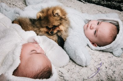 Double Woof: Fun Children Photography (16)