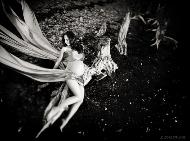 Creative Maternity and Pregnancy Photos in New York and Worldwide (3)