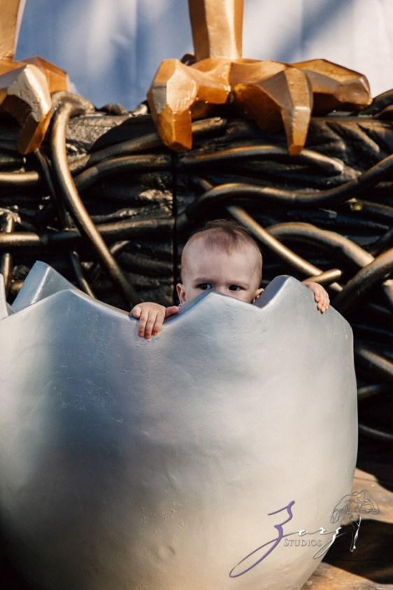 Cub: Outdoor Hilarious First Birthday Photoshoot by Zorz Studios (14)