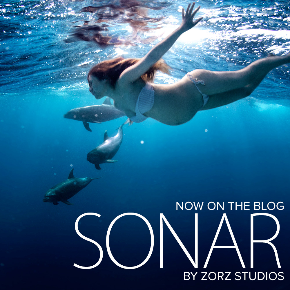 Sonar: Maternity Photos from NYC to the Ocean in One (Long) Day by Zorz Studios (41)
