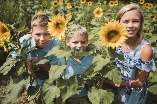 Field Trap: Sunflower Field Photoshoot for Three Families by Zorz Studios (35)