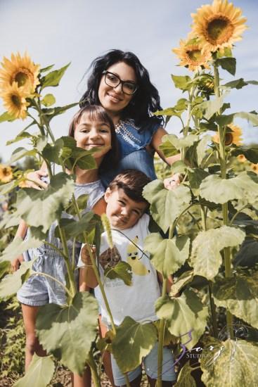 Field Trap: Sunflower Field Photoshoot for Three Families by Zorz Studios (31)
