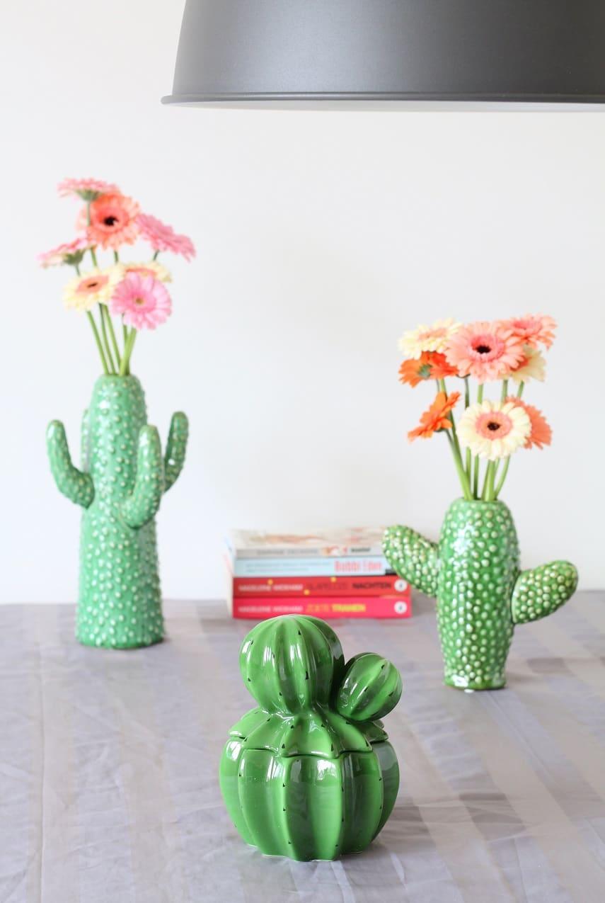 &Klevering cactus