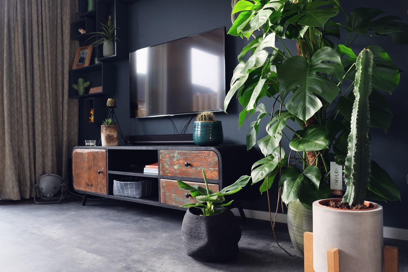 Botanisch interieur veel planten en veel groen
