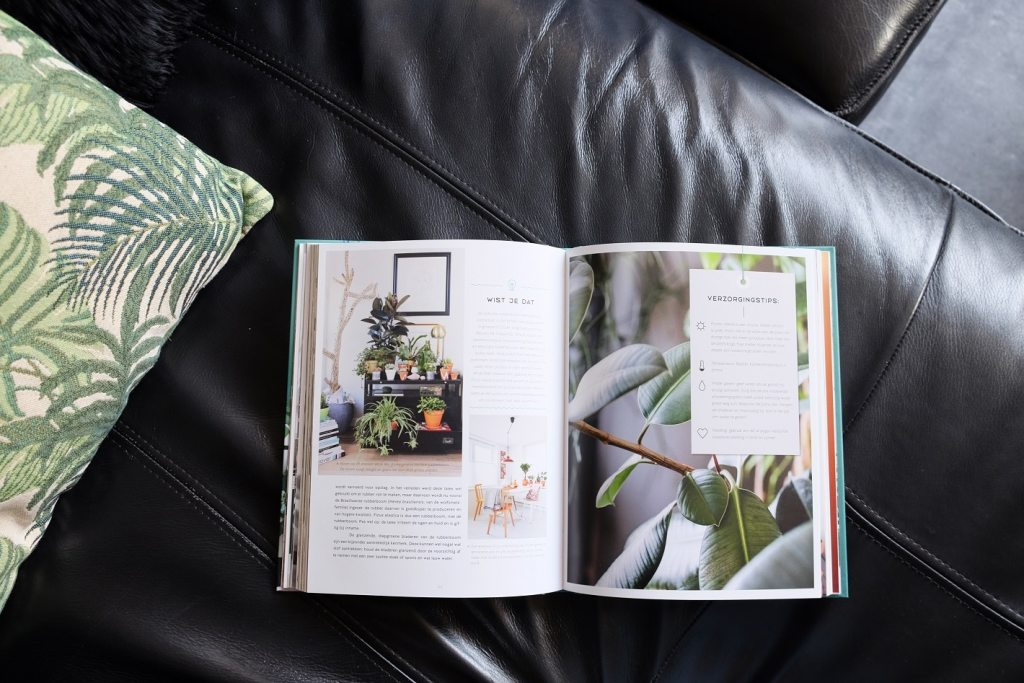 urban jungle boek