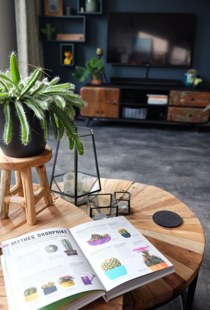 boek happy cactus