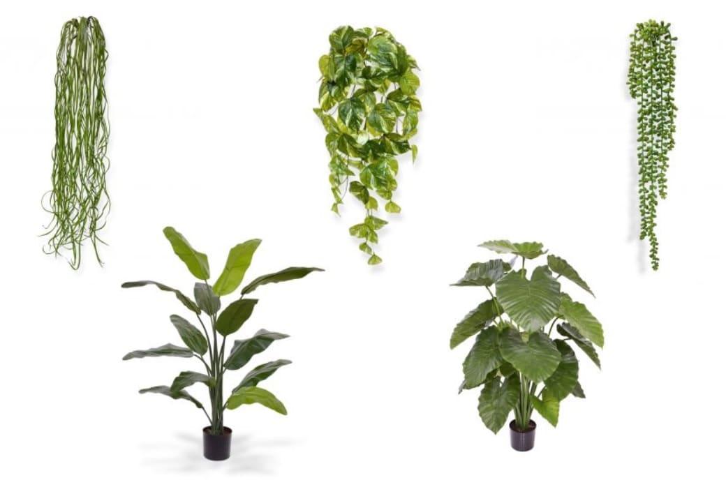 kunst hangplanten