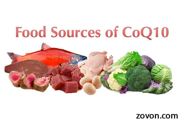 Natural Sources Of Coenzyme Q In Foods