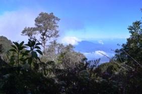 Panama, szlak na wulkan Baru 6