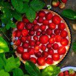 Zdjęcie - Tarta z panna cottą i truskawkami - Przepisy kulinarne ze zdjęciami