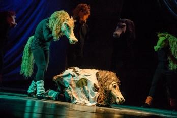 Ljetnja pozornica, Priča o konju (10+) | Dečje pozorište Subotica, Foto: Duško Miljanić