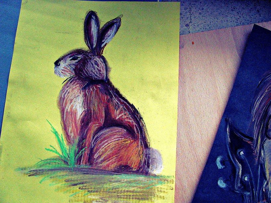 Malba suchým pastelem - zajíc z profilu na žlutém papíře.