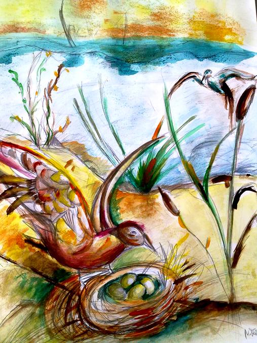 Lehká akvarelová malba ptáčka, který přílétá do svého hnízda u jezera, všude kolem je rákosí a vysoká tráva.