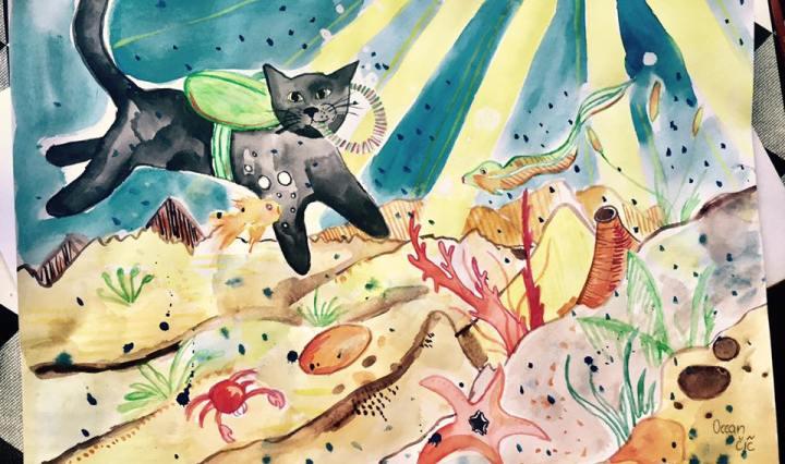Na obrázku je černá kočka, která se potápí v oceánu. Na dně je spousta písku, kamení, ryb, korálů a hvězdice.