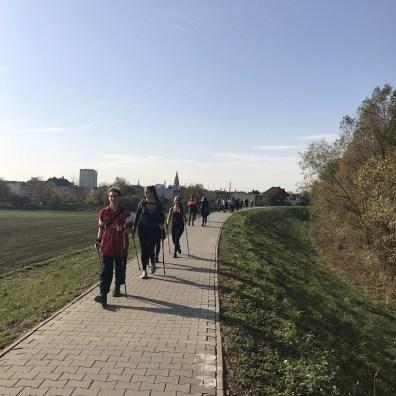 Nordic_walking_10_2018 (4)