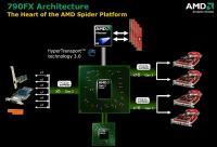 spider_architecture_b.jpg