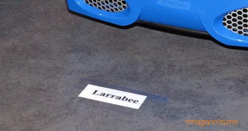 larrabee_intro