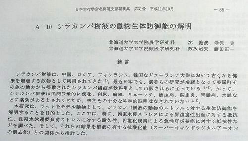 白樺の恵北大研究