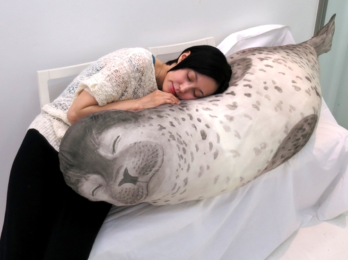 seal_cushion1