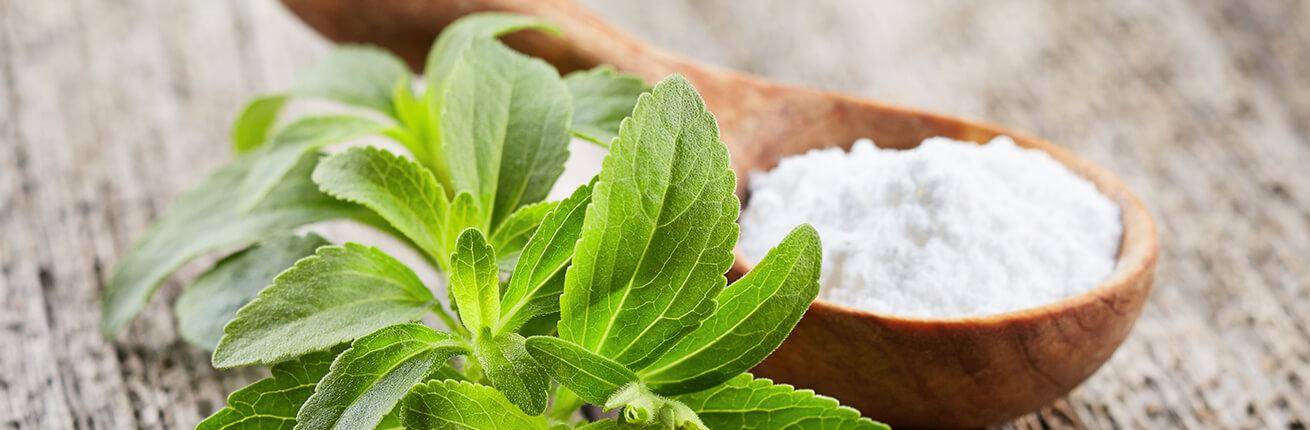 Stevia kaufen. Lebensmittel ohne Zucker, ideal für Diabetiker und Übergewichtige! Pflanzliches Süßungsmittel. Süßer als Zucker, für Diabetiker & Übergewichtige! Stevia Produkte kaufen, Stevia Lebensmittel kaufen.