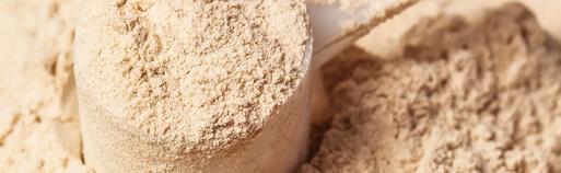 Zuckerfrei Online Whey Protein kaufen, Whey Protein online kaufen. Molkeneiweiß kaufen. Whey kaufen