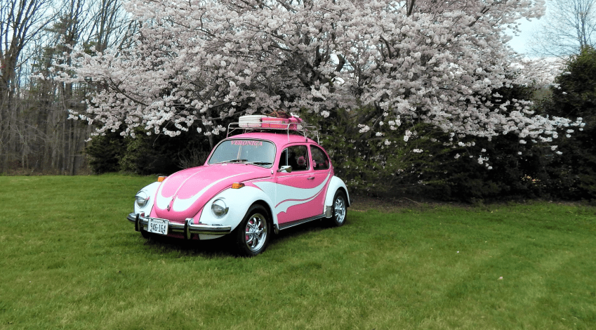 Penny Williams' 1971 Super Beetle Veronica