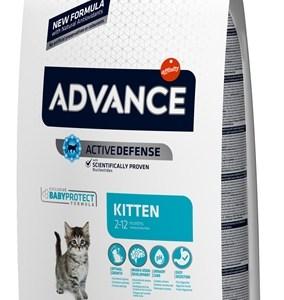 Advance cat kitten chicken / rice