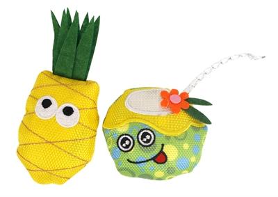 Fofos summer ananas met drankje