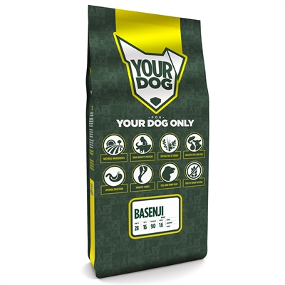 Yourdog basenji pup