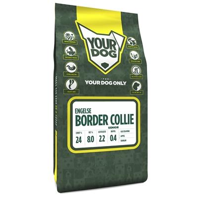 Yourdog engelse bordercollie senior