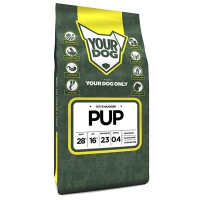 Yourdog puppy