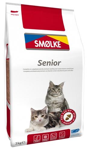 Smolke cat senior