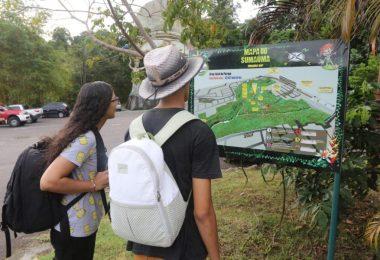 Parque Estadual Sumaúma