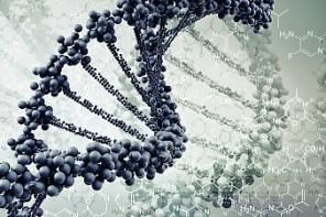 Die DNA des Handels CEO in 2020 – Eine Studie