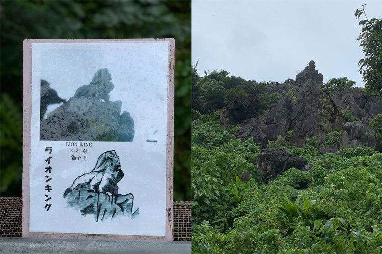 daisekirinzan-lion-king