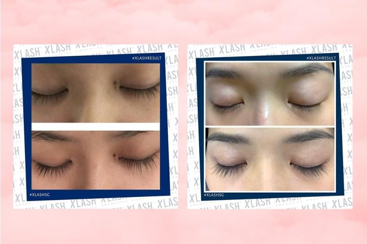 xlash-eyelash-serum-results