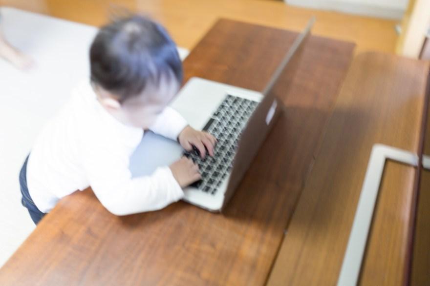 トレンド,ブログ,無料,ブログ,有料,ブログ,どっち,いい