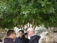 san Giovanni in deserto 21.10 025 (Medium)