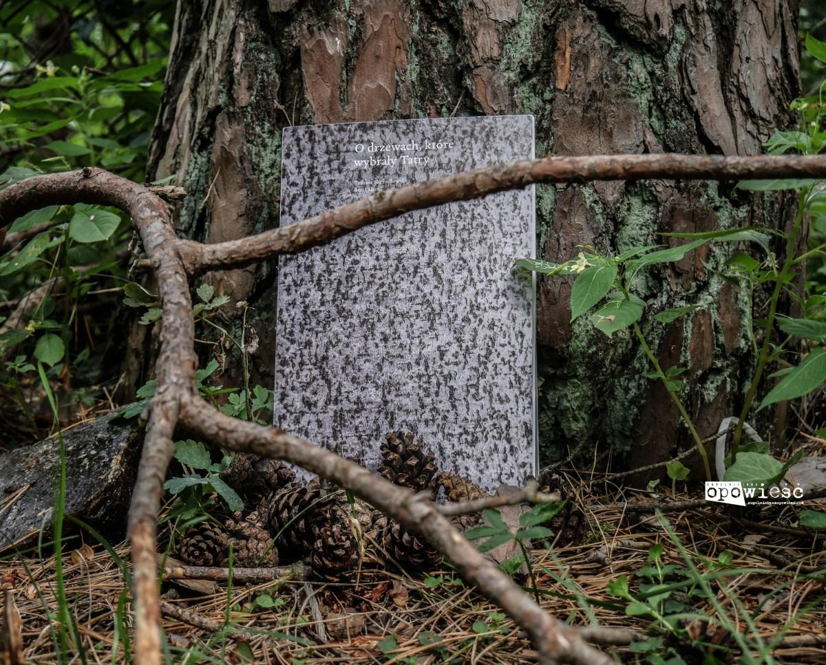 Opowieści z tatrzańskiego regla | Tomasz Skrzydłowski, Beata Słama, O drzewach, które wybrały Tatry