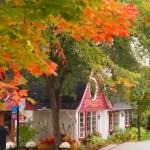 海外旅行に初めて行ったのはカナダだけど金貨を求めて季節も秋が