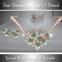 zuri-rayna-star-poinsettia-set-champagne_sagepic
