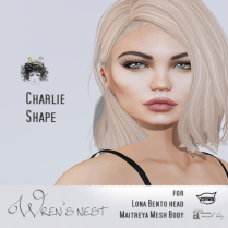 Charlie Shape Vendor 2 Image