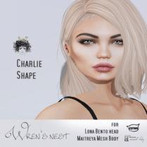 Charlie Shape Vendor 2 Image