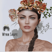 Wynn Shape Vendor Image 2