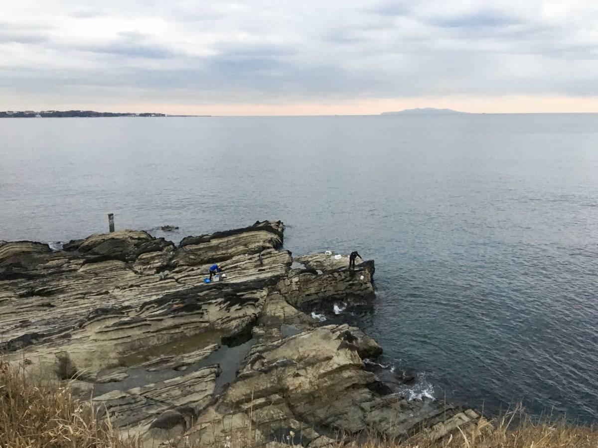 クロダイが釣りたくて逗子からそこそこ行きやすい地磯、横須賀・長井にある荒崎海岸で釣りをした時の話