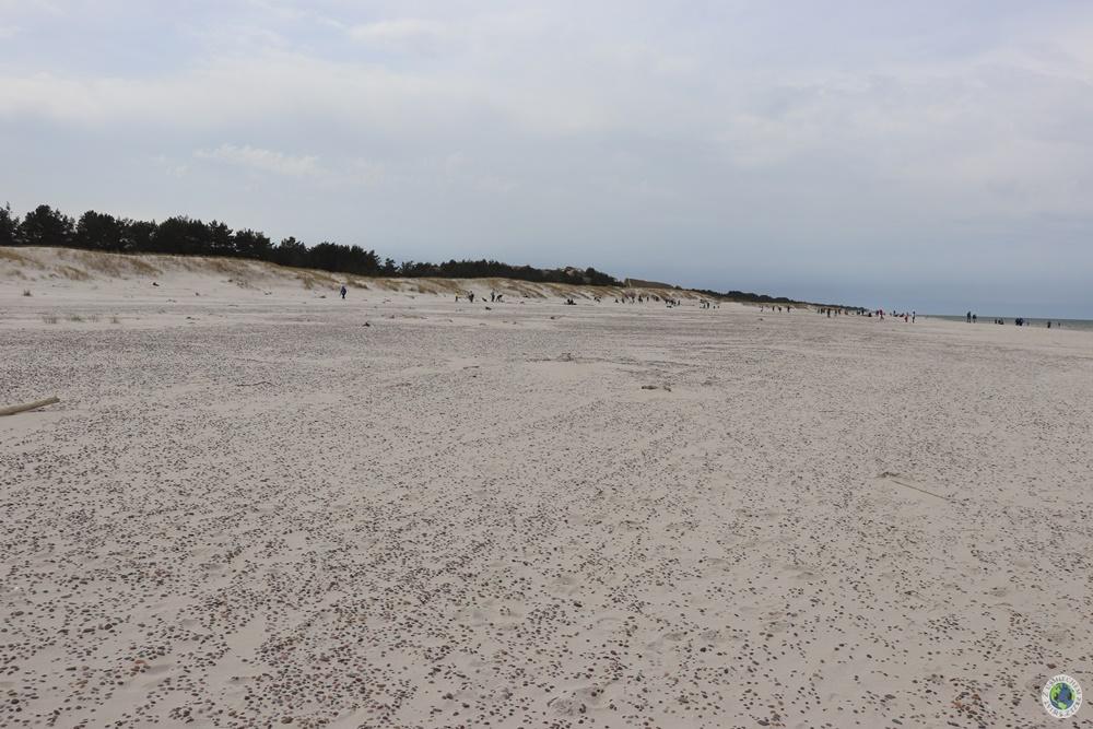 droga do wydm ruchomych